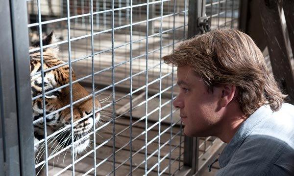 De nuevo, compramos un zoo
