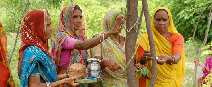 Casarse con un árbol es posible en la India