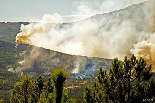 Sierra de Gata pasto de las llamas