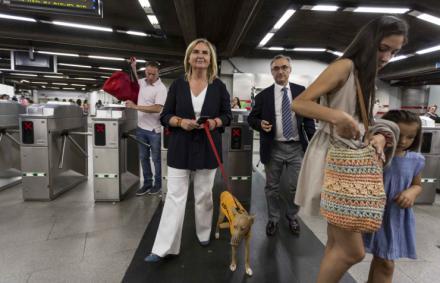 Cerca de 400.000 perros han accedido a las instalaciones de Metro de Madrid desde julio de 2016