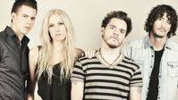 Así se cuidan… Jenny and the Mexicats