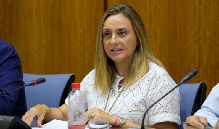 El Gobierno andaluz elabora un catálogo 'exhaustivo' del patrimonio de suelos de AVRA