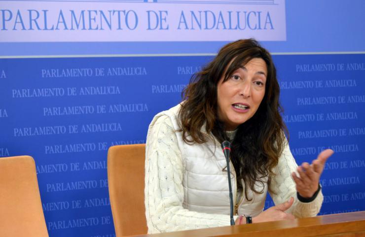 """López: """"Moreno defiende con firmeza la voz de Andalucía en España frente al silencio de Díaz"""""""