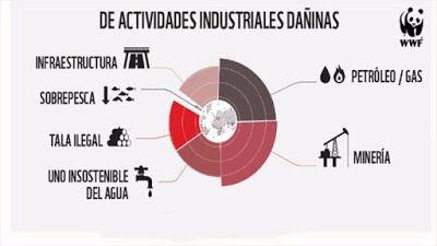 La mitad del Patrimonio Natural protegido por la UNESCO está en peligro por la industria