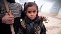 En 2015 hubo casi 90.000 menores solicitantes de asilo no acompa�ados