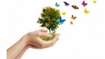 La SEO/Birdlife pone en marcha una Red de Jardines por la Biodiversidad