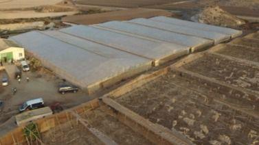 Incautadas más de nueve toneladas de marihuana en Lorca