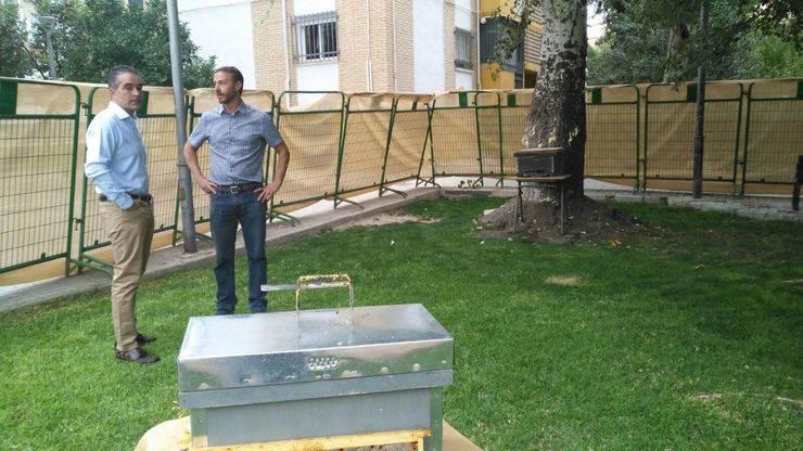 El Ayuntamiento de Jaén realiza una actuación medioambiental