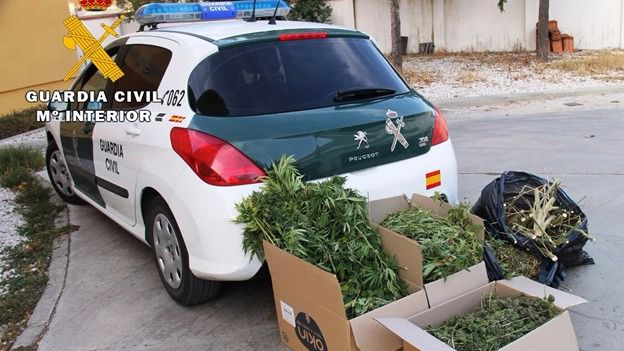 320 kilos de marihuana interceptados y tres personas detenidas en Ávila