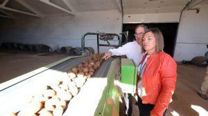 Crece un 2,9 % la superficie de patata en Castilla y León y alcanza las 20.500 hectáreas