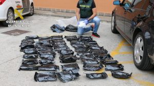 20 detenidos en Tarragona, Madrid, Guipúzcoa, Álava y Navarra en el marco de la operación 'Perillán'
