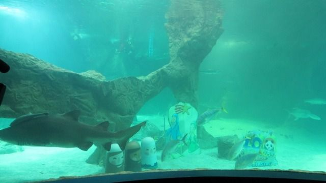 Zoo Aquarium de Madrid y Ecovidrio fomentan el reciclaje con un Belén entre tiburones