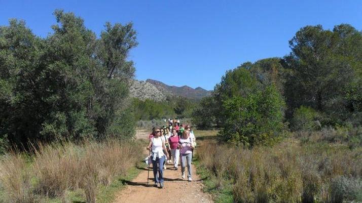 El Patronato de Deportes de Castellón abrirá una ruta de senderismo por el Desert de les Palmes