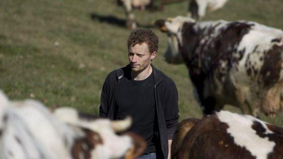 Castilla y León anticipa 790 millones de euros en ayudas de la PAC a 69.000 agricultores y ganaderos