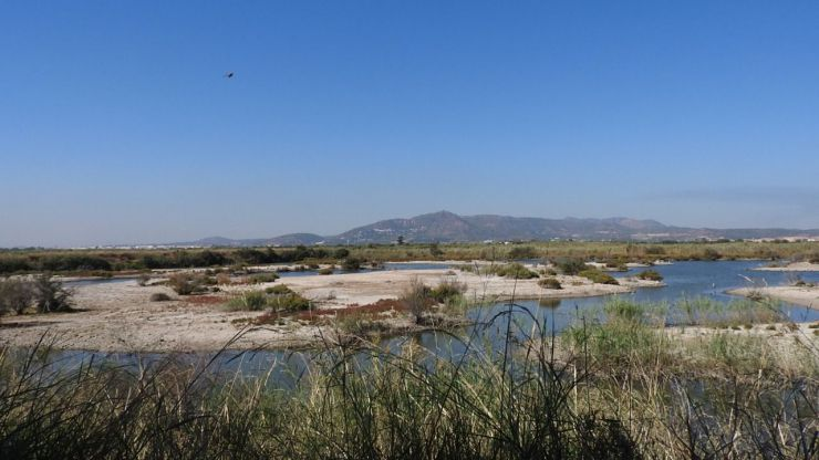 Una aportación extraordinaria de agua del Xúquer llega a la Marjal dels Moros tras el incendio