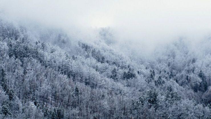 Protección Civil declara la alerta en las provincias de Burgos y León ante la previsión de nevadas en las próximas horas