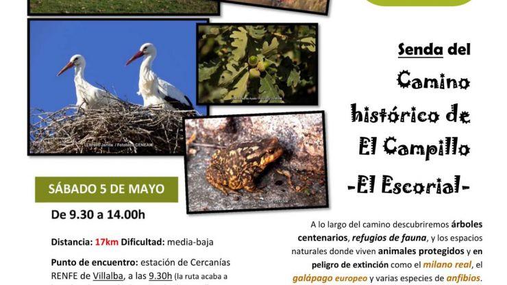 El Ayuntamiento de El Escorial te invita a conocer el Camino Histórico de Campillo