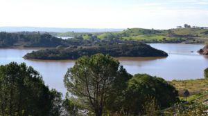 Los pantanos encadenan tres meses de ganancias consecutivas