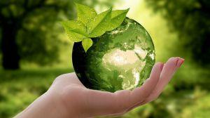 El nuevo reglamento de la producción ecológica favorecerá la armonización del modelo de producción en la Unión Europea