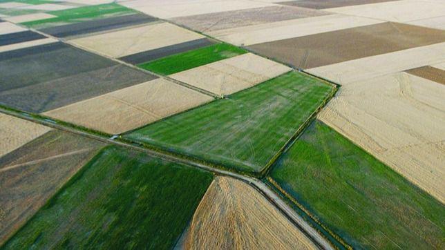 La Junta aprueba los planes de mejoras territoriales y obras de dos zonas de Salamanca y Zamora