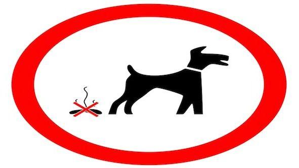El Escorial realiza una campaña de información de limpieza en vía pública para los propietarios de animales