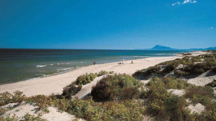 La Comunitat Valenciana prevé recibir 4,4 millones de turistas internacionales este verano, con un incremento del gasto del 3%
