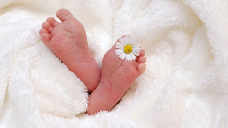 Pozuelo abre una nueva convocatoria de ayudas por nacimiento o adopción de hasta 2.500 euros