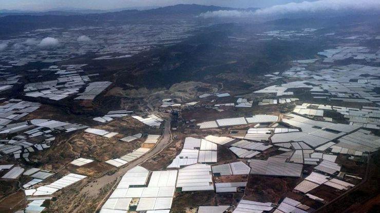 La superficie de invernaderos de Andalucía oriental crece un 1,7 %