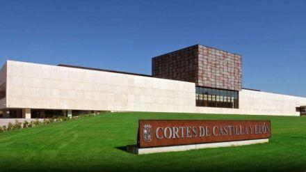 La Junta de Castilla y León constituye la Sección de Colaboración con el Tercer Sector