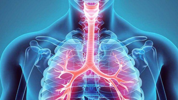 La fisioterapia respiratoria disminuye notablemente los síntomas en pacientes con EPOC