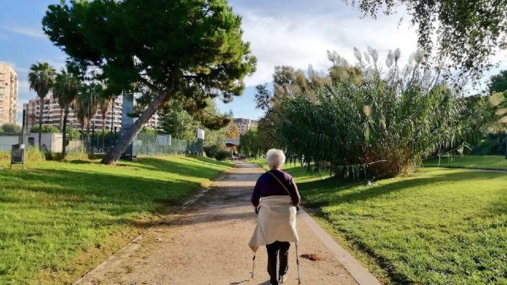 Culmina el proyecto 'Una València més Verda'