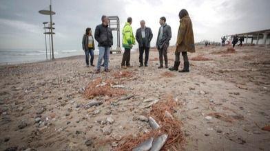 Ribó recorre las playas del sur para comprobar sobre el terreno los daños causados por el temporal