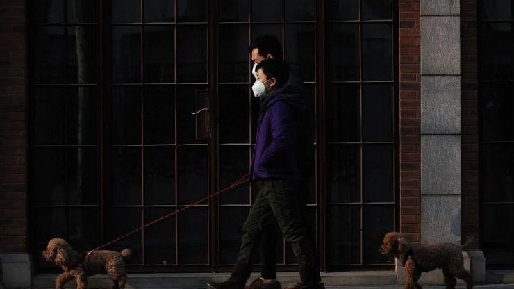 Coronavirus: Greenpeace denuncia que solo 16 ciudades han ampliado espacios permanentes para moverse de forma segura