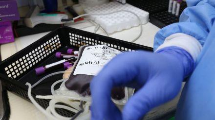 Más de 1,1 millones de personas donaron sangre en España durante 2019