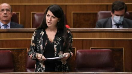 Olona carga contra el 'caso Dina' y pide responsabilidades al Gobierno
