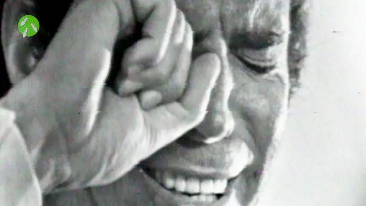 'Hormigas Blancas' da 'Un golpe brillante' al cine de La 1