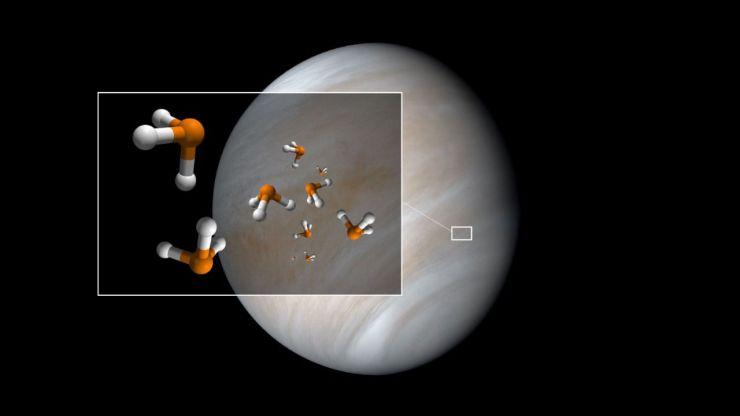 Detectan un posible marcador de vida en Venus