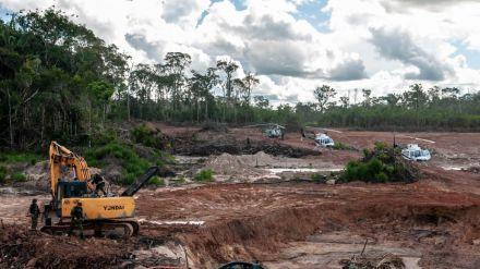 La selva amazónica ha perdido en un año una superficie equiparable a un millón y medio de campos de fútbol
