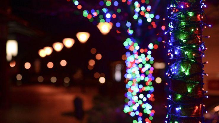 Incidencia de la iluminación navideña sobre la biodiversidad