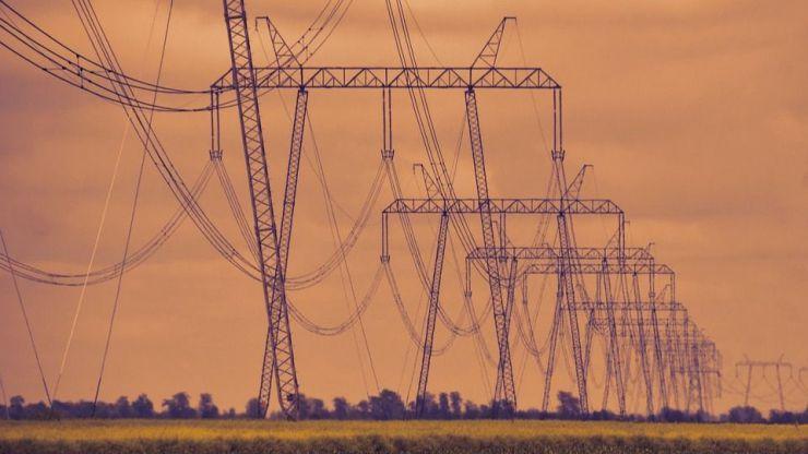 Las infraestructuras eléctricas como corredores ecológicos para la pequeña fauna