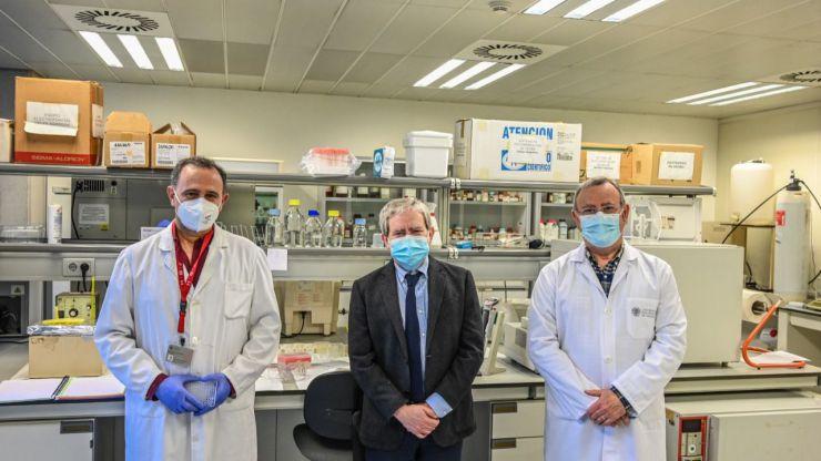 Un nuevo test inmunológico para estudiar la seroprevalencia frente al Covid 'marca España'