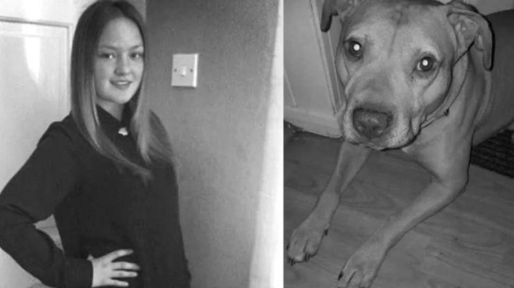 Un perro mata a una joven de 25 años mientras dormía