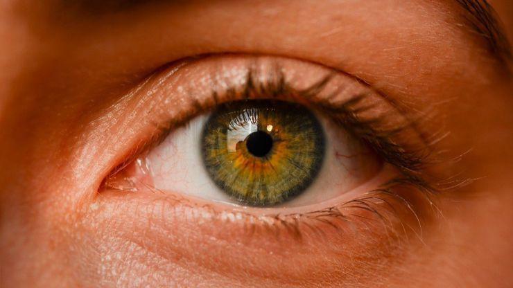 Trastornos oculares: Un ingenioso tratamiento con biomembranas con células madre