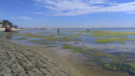 Las administraciones públicas españolas como grandes vulneradoras de la legislación ambiental en Europa