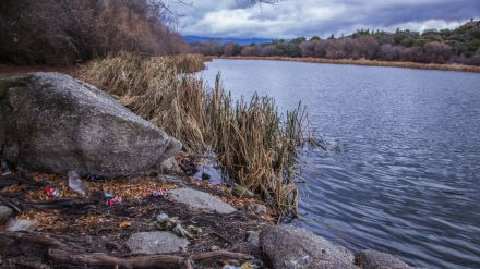 Nueva oportunidad para recoger datos sobre la basuraleza en entornos fluviales