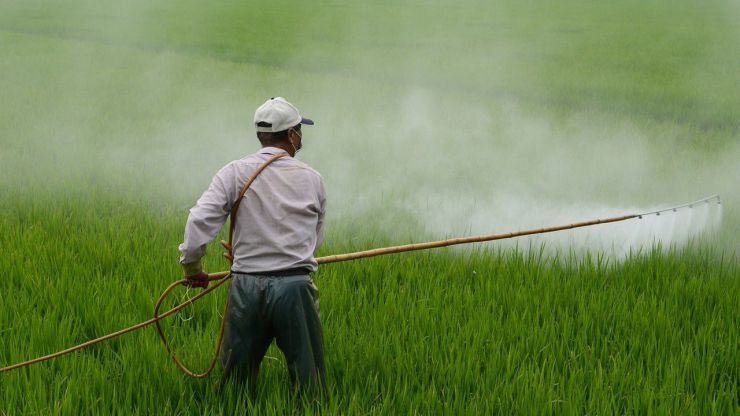 Contra la aprobación de plaguicidas tóxicos para polinizadores y personas