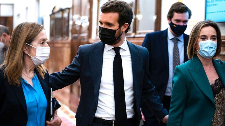 Casado a Sánchez: 'España se va a la ruina mientras su Gobierno se pelea'