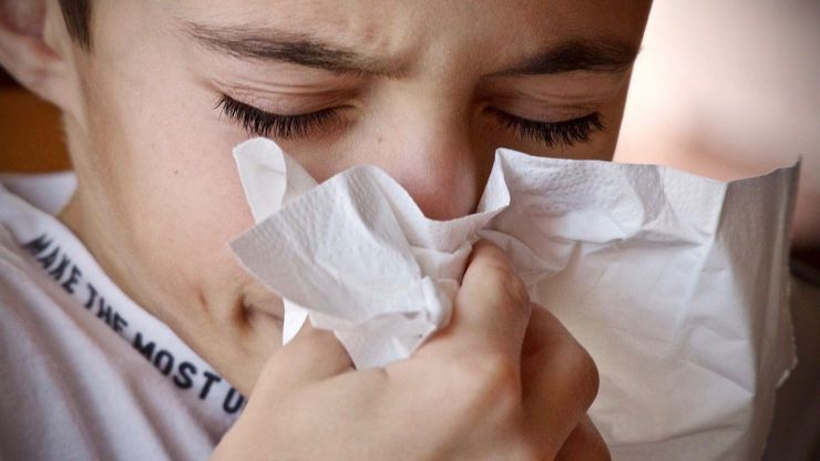 ¿Cómo prevenir los síntomas de la alergia al polen?