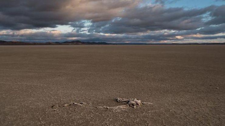 Más del 75% de España está ya en riesgo de desertificación