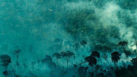 La Amazonía brasileña registró en junio la peor cifra de incendios en 14 años